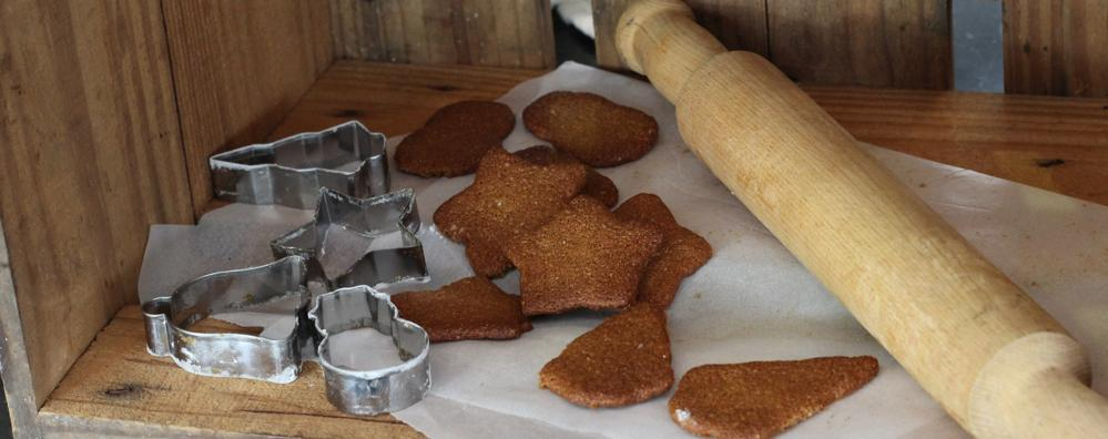 christmas-gingerbread-vegan-paleo