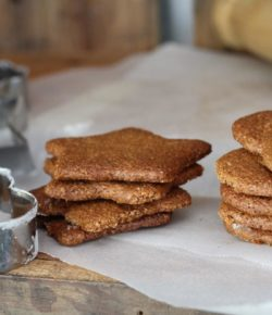 Christmas Gingerbread (paleo. vegan)