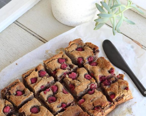 Raspberry Choc Chip Blondies (vegan. grain free)
