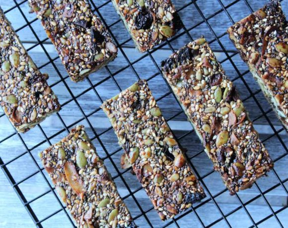 Seedy Bars (nut free. paleo. keto)