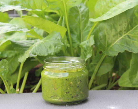 Fennel Pesto (vegan. paleo. keto. nut free)